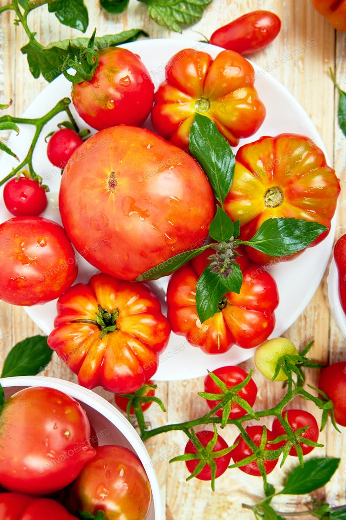 Mix of tomatoes background. Beautiful juicy organic red tomatoes
