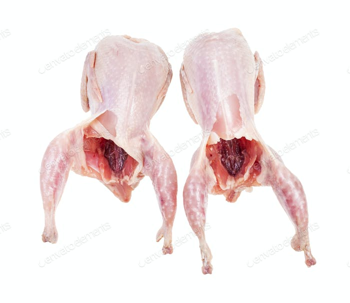 two raw plucked and gutted quails isolated