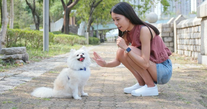 Woman play with her dog at outdoor