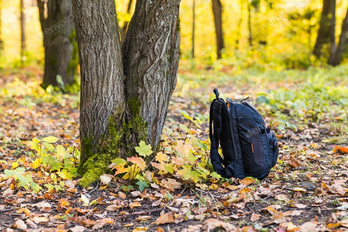 backpack in the woods concept travel tourism