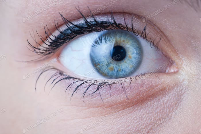Close-up of a beautiful female blue eye