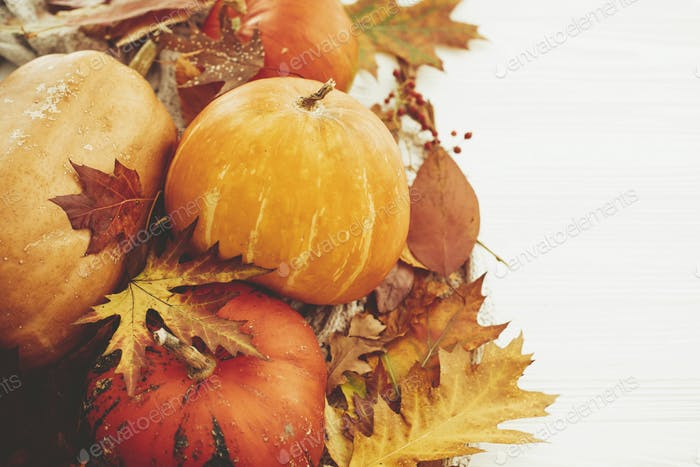 Happy Thanksgiving concept. Cozy autumn image