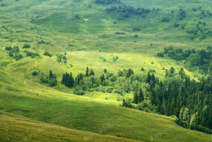 View on highland Lagonaki, Republic of Adygea, Russia