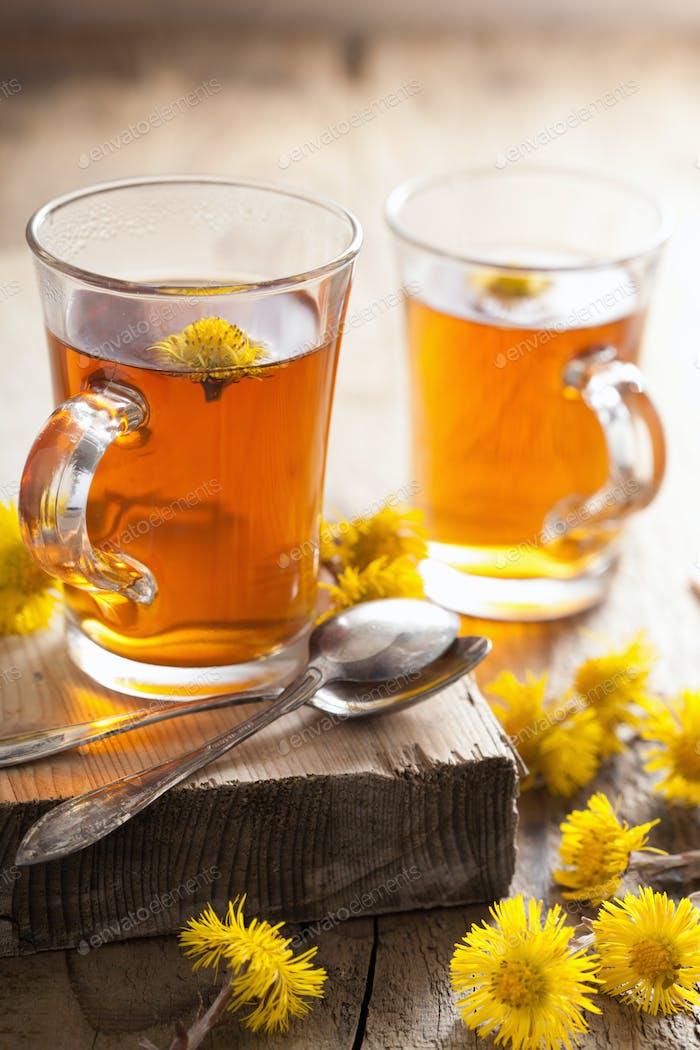 herbal tea with coltsfoot flowers