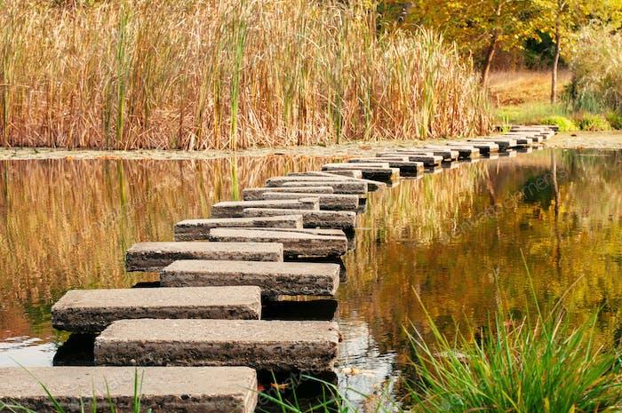 Path in lake