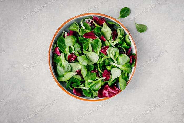 Fresh green mixed salad leaves in bowl with radicchio and lamb's lettuce.