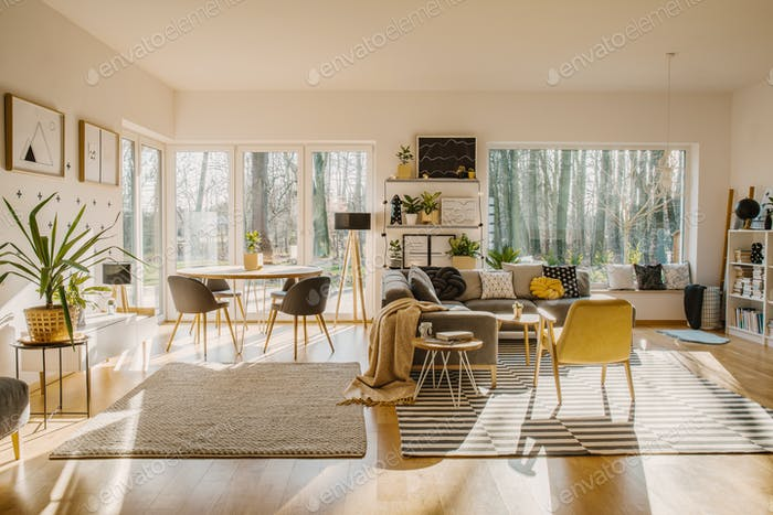 Spacious and natural living and dining room interior with a cozy