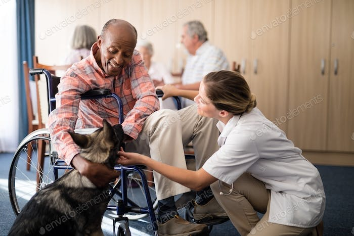 Cheerful female doctor kneeling by disabled senior man stroking puppy