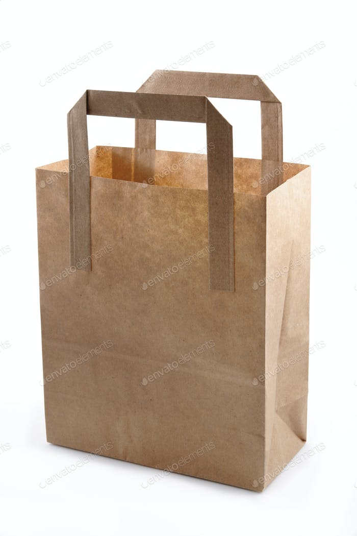 Paper Shopping or Grocery Bag