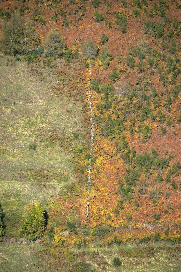 Aerial view of abandoned grasslands in autumn