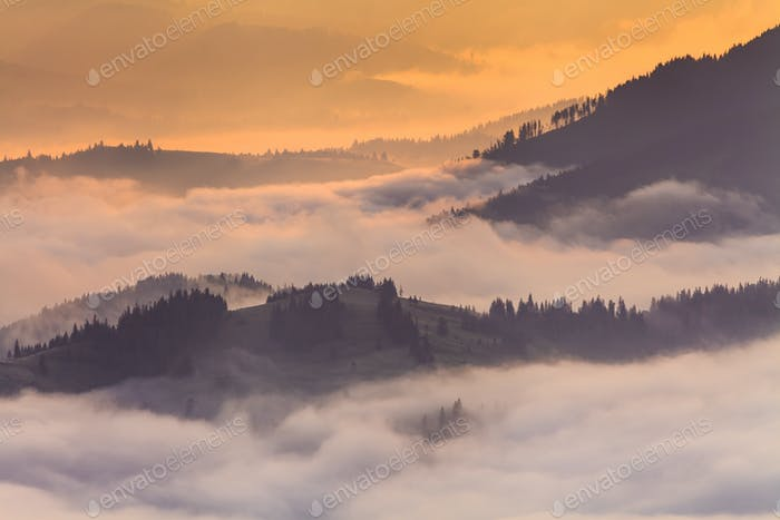 Misty valley in the mountains at dawn. Beautiful landscape