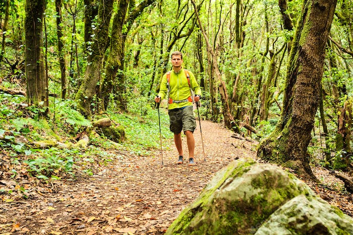Hiker walking trekking in green forest