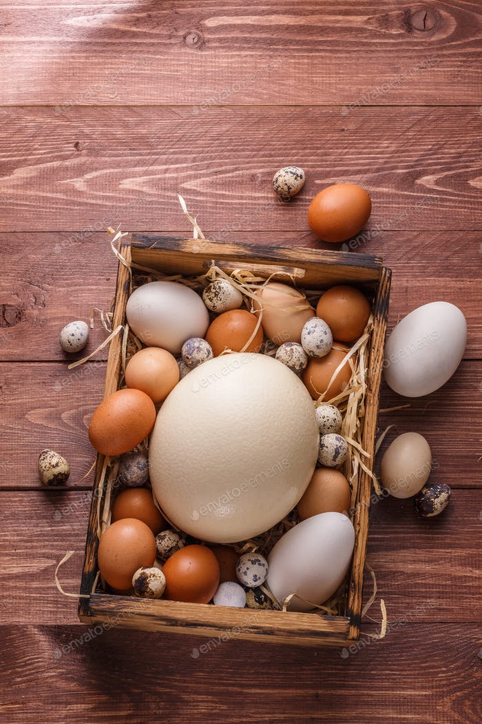 Ostrich, goose, hen and quail eggs in a wooden box, place for wording