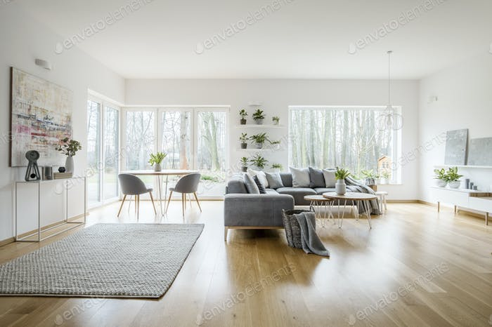White elegant living room interior with windows, grey corner sof