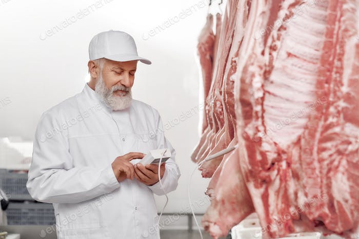 Butcher holding device and testing fresh pork carcasses