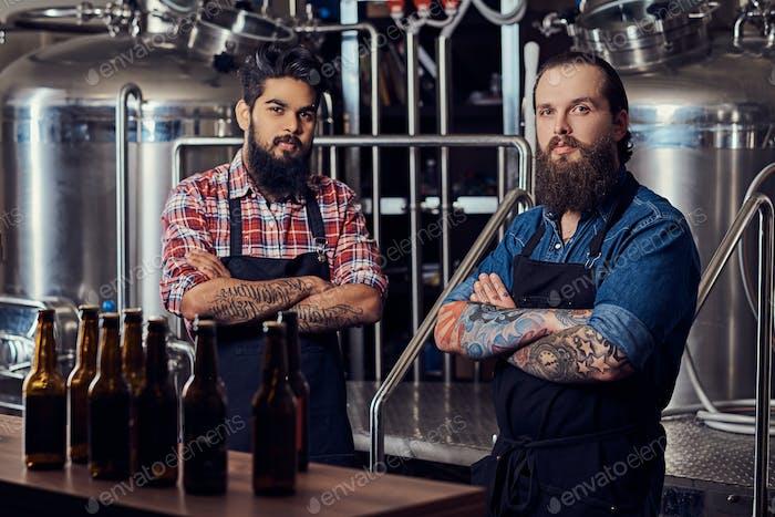 Два межрасовых хипстера полные бородатые самцы в футболках и фартуках, работающих в пивоварне.