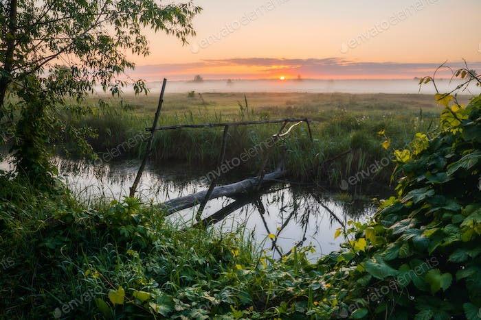 Misty dawn on the banks of a small river with a bridge