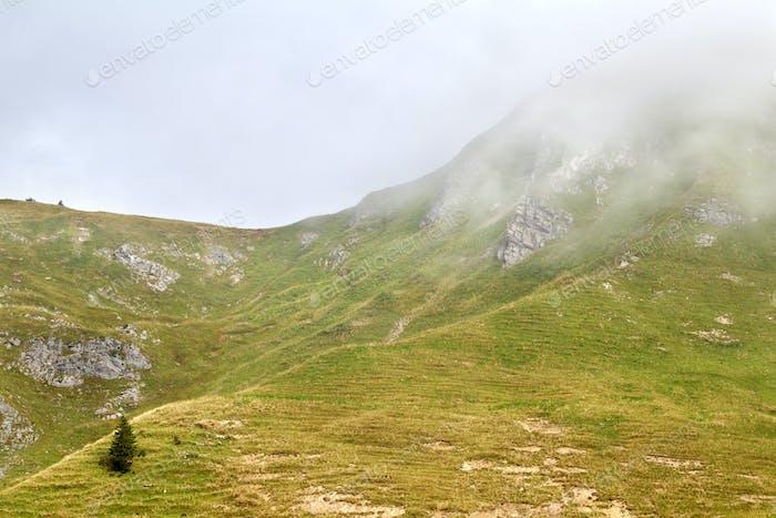 alpine hills in dense fog