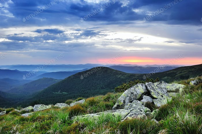 Beautiful summer landscape in the mountains. Sunrise. Carpathian