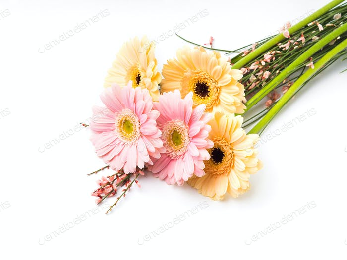 Beautiful gerbera bouquet isolated on white