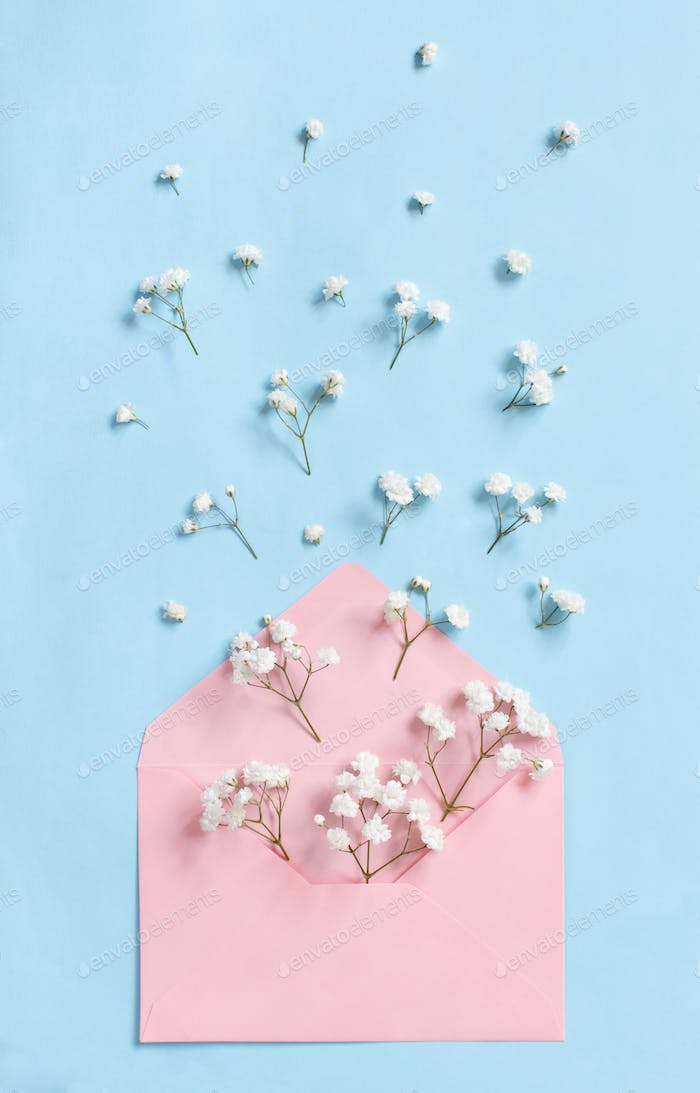 Flowers and envelope on a light blue background