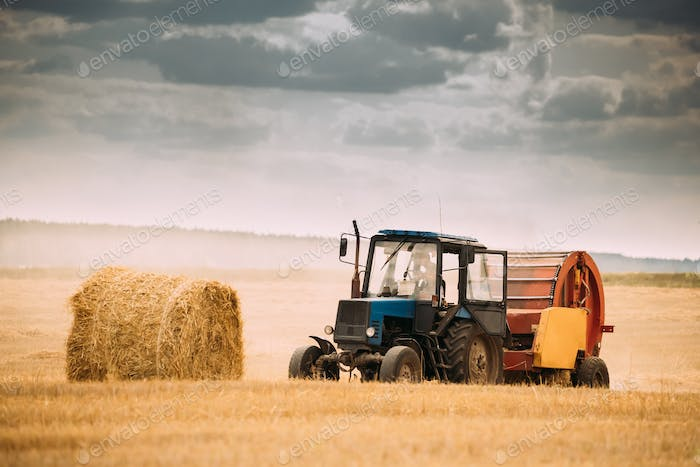 Tractor Collects Dry Grass In Straw Bales In Summer Wheat Field.