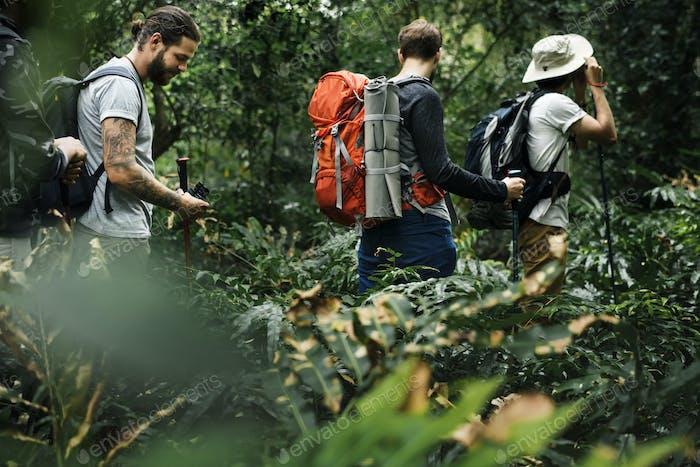 Trekking im Wald
