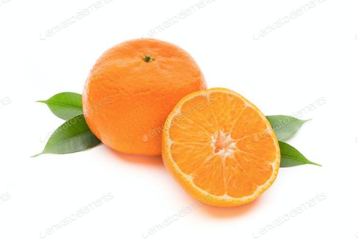 Orange on the isolated white background.