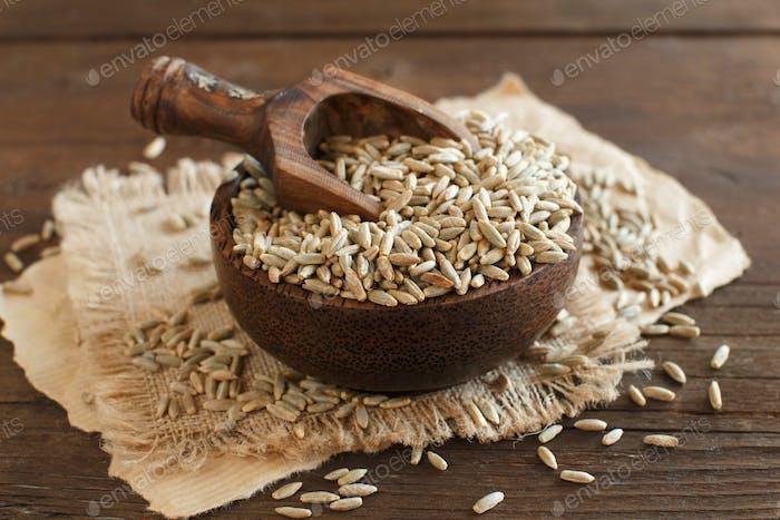 Dry Raw Rye Grain