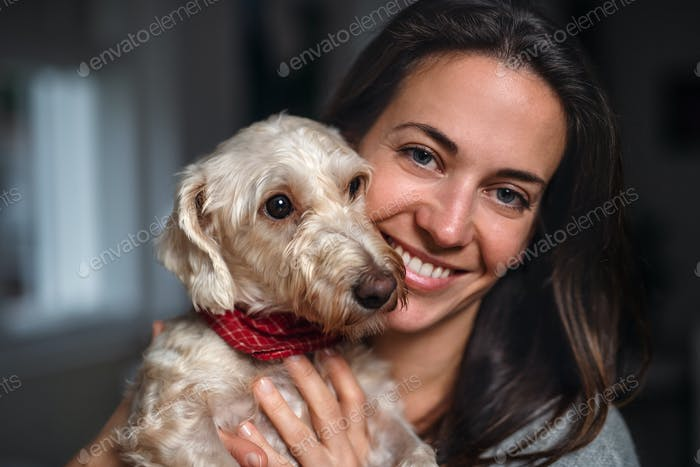 Attractive businesswoman with dog standing indoors in office, resting.