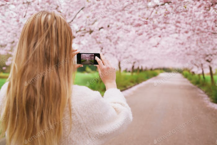 Young woman shooting spring blossom garden with mobile phone
