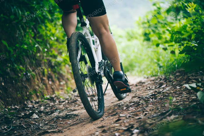 Langlaufradfahren