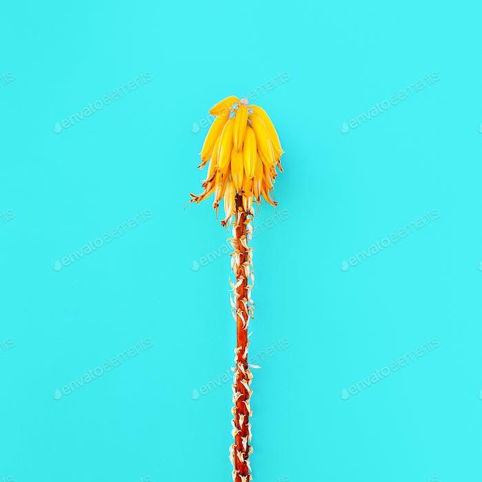 Gelbe tropische Blume. Kreatives Design. Minimal Mode-Kunst gal