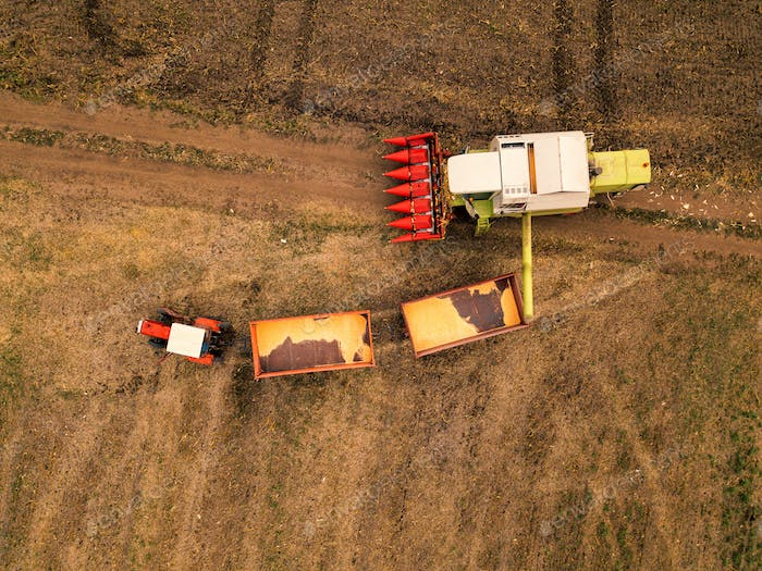 Corn maize harvest, aerial view of tractor and combine harvester