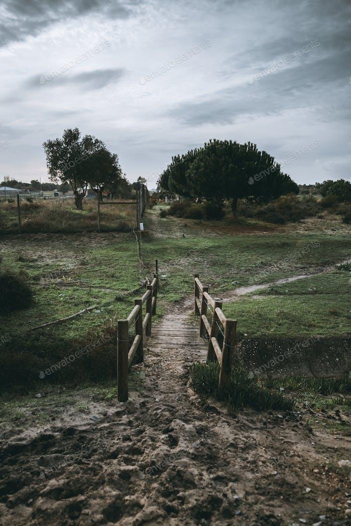 A wooden pedestrian bridge in a park