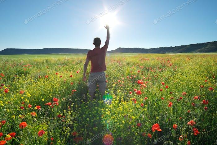 Man in spring meadow of poppy reach to sun