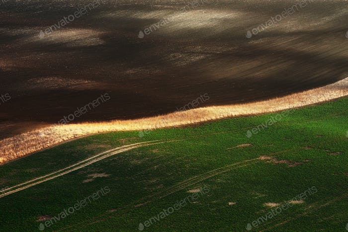 Detail of green fields with beautiful striped hills. South Moravia region, Czech republic