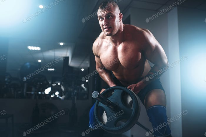 Muscular athlete training with weight in sport gym
