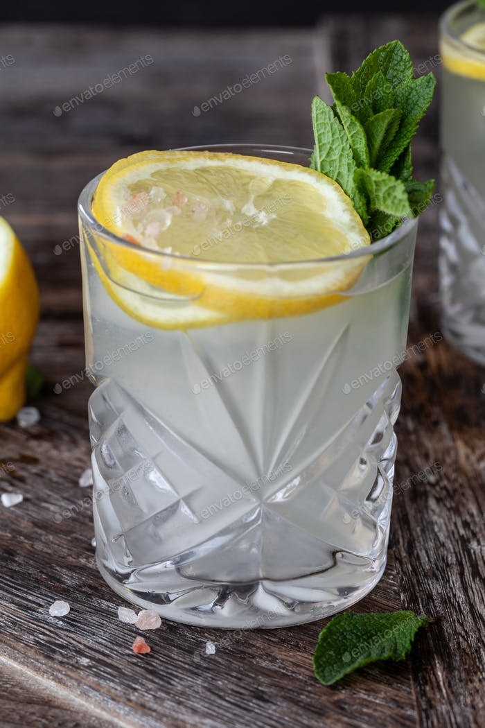 Gin Tonic with lemon and mint