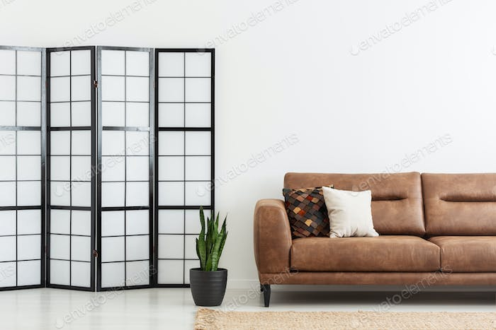 Screen and plant next to leather sofa with cushions in white apa