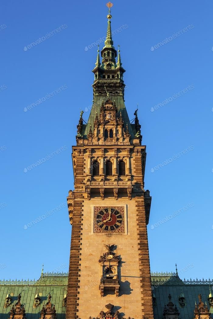 Old City Hall on Rathausmarkt in Hamburg