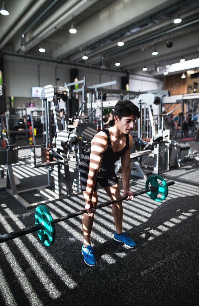 Fit young man in gym working out, lifting barbell.
