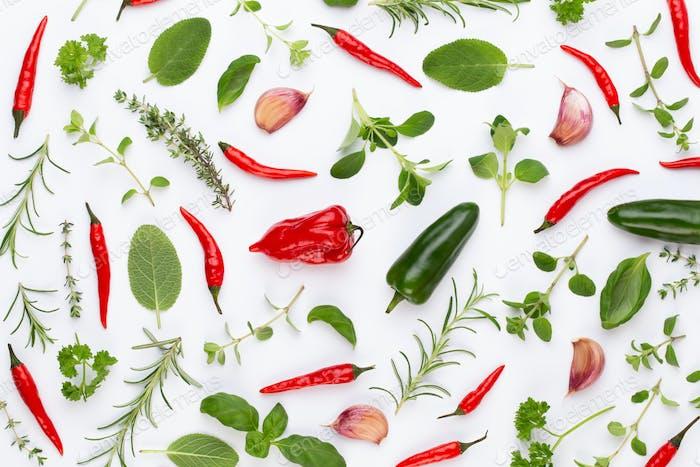 Gewürzen Sie Kräuterblätter und Chilischoten auf weißem Hintergrund.