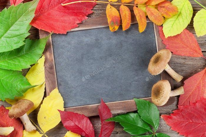 Autumn chalkboard and mushrooms