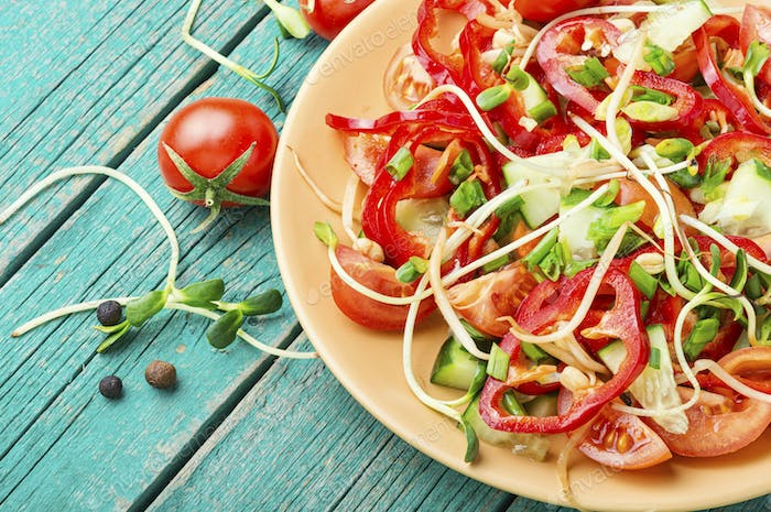 Vegetable salad with sprouts