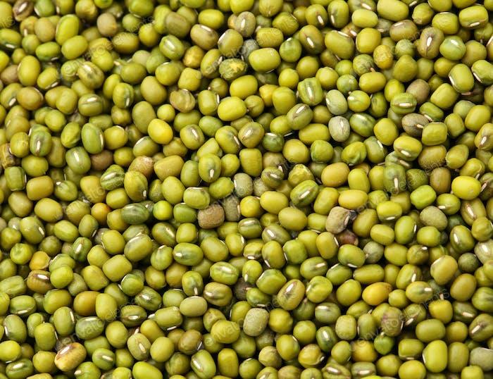 Mung bean close up
