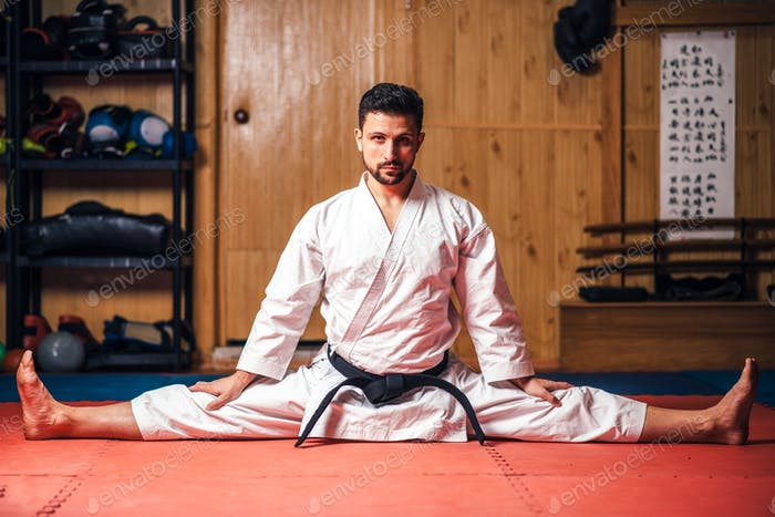 Martial arts master doing stretching exercise