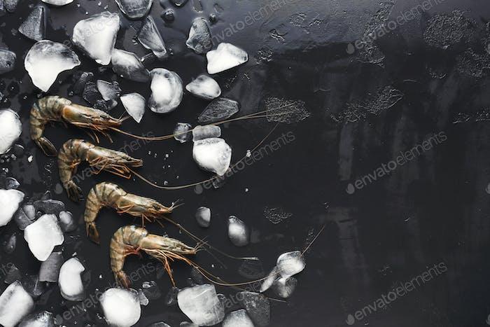 Rohe Garnelen mit Eiswürfeln auf schwarzem Hintergrund