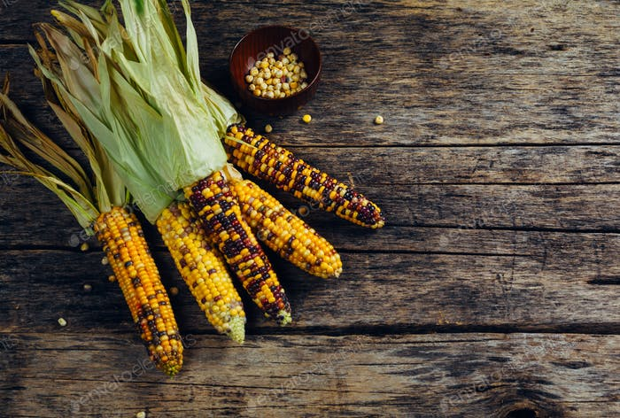 Fresh corn on wooden table