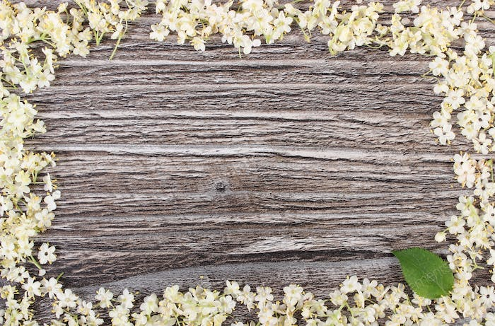 Frame of elderberry flowers on rustic wooden board, copy space for text